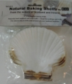 Natural Scallop Shell Set
