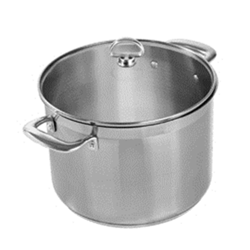 Chantal 8 quart Induction 21 Steel Stock Pot with Lid